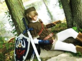 Napping Link by LinkInSpirit