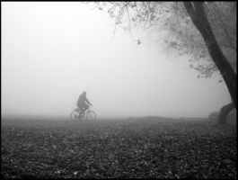 Alone in the fog by Ph1at1ine