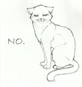 No-Cat by Wixner