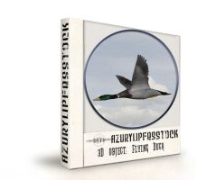 3Dobject-flying Duck by AzurylipfesStock
