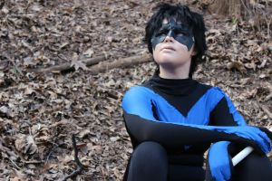 Nightwing: Thoughts by SkittsTheEchidna