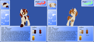 OC Sheet - Gin and Tonic by FuyusFox