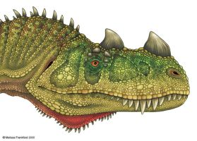 Ceratosaurus Head Study by mmfrankford