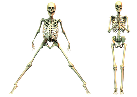 Spooky Skeleton 04 PNG Stock by Roy3D