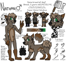 Nat Ref by CIaw