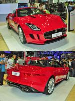 Motor Expo 2013 22 by zynos958
