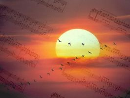 Music 2 My Eye's by Augle
