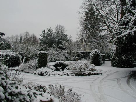 Snow capped Garden by QwentyJ