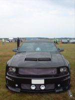 Ford Mustang by wellgraphic