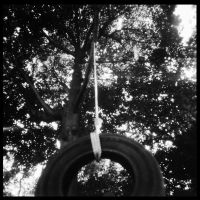 2013-228 Tire swing by pearwood