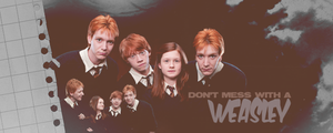 Weasley Wizards by cheapescape