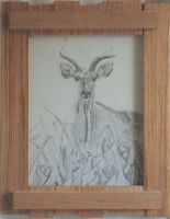 Greater Kudu by cherokeevision