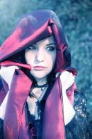 The Little Red Riding Hood - 2 by mzelBulle