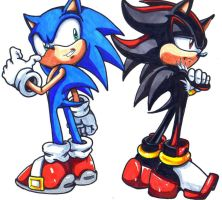 sonic and shadow by trunks24