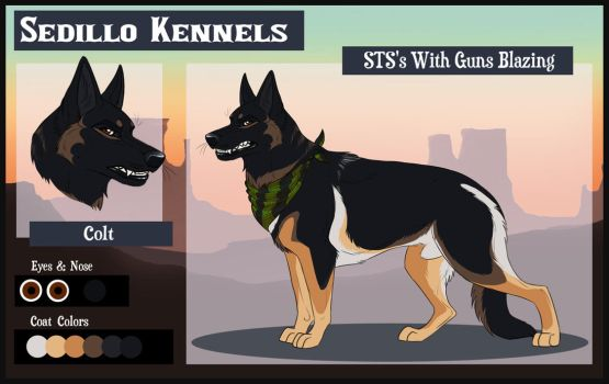 STS's With Guns Blazing: Colt by Sedillo-Kennels