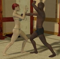sparring in Dojo 2 by cattle6