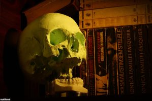Tales from the CRYPT by Lestatis