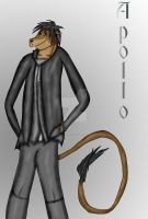 Apollo, the Lion by elementalgoddragon