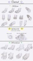 Paws tutorial by Liraelwolf