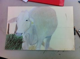 Traditional Cow - WIP by BV-Academy