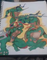 TMNT Commission by Pradaninja