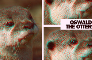 Otter by SoClassy