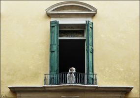 The Watchdog by Fedp