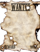 Wanted Poster by DAWildGuns