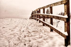Fence in the Snow... by TheBaldingOne