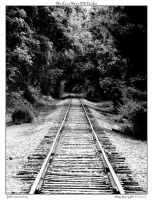 The Line Home - B-W Darker by yellowcaseartist