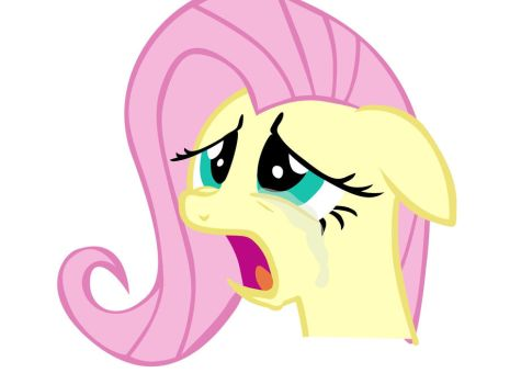 Don't cry Fluttershy by dowdlekid