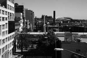Seattle, August, 2010, 014 by photoscot