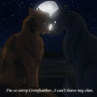 Leafpool and Crowfeather by RiverSpirit456