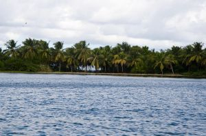 Los Haitises  National Park Dominican Republic 89 by FairieGoodMother