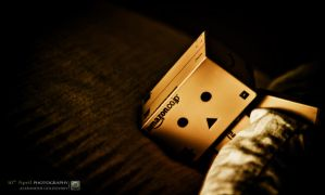 Shhh, Danbo is Sleeping by 10thapril