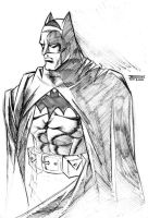 The BatMan by Boyann