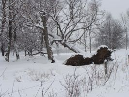 Big snowproblem by punkyitz
