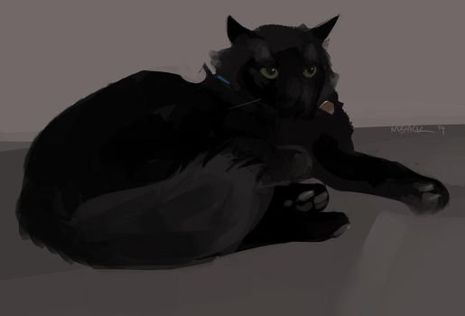 Bagheera by Mr--Jack