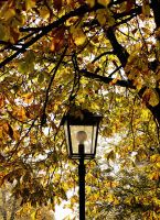 Autunno by tortagel