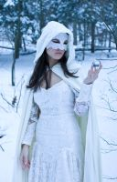 lace, snow, crystal 2 by eyefeather-stock