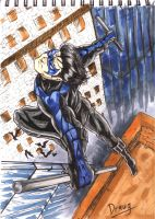 Nightwing by Draugwenka