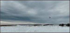 Getting The Most out of Winter by Arawn-Photography