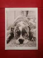 Pit Bull by Lenzations