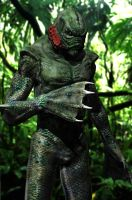 Creature from the Black Lagoon by tlmolly86