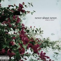 + Never Shout Never: What Is Love by SaviourHaunted