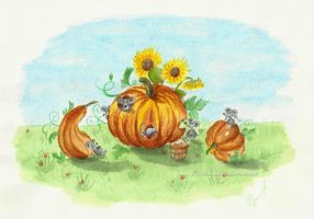 Pumpkins by Rustamova