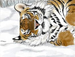 Amur Tiger by ebonytigress