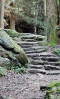 stone walkway by MLeighS