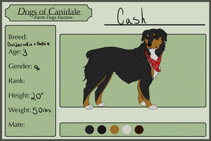 Dogs of Canidale : Cash by dragonqeen1010