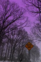 Dead end 2 by photomom7730